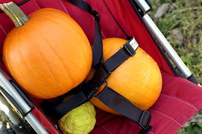 Pumpkins web